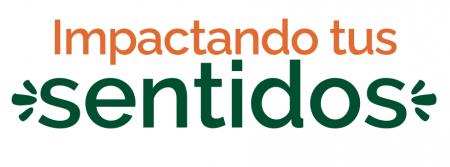 Captura de Pantalla 2021-10-06 a la(s) 13.00.20